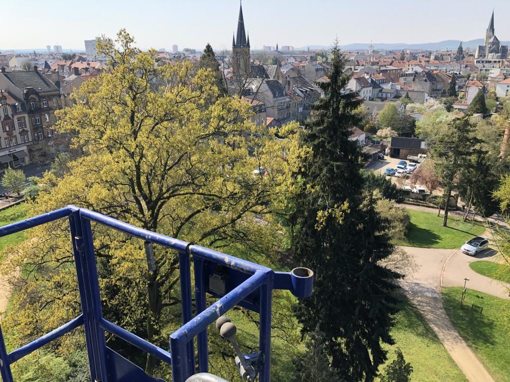 Une fois en haut, il ne vous reste plus qu'à admirer le paysage... ou à travailler sur votre chantier de toiture !